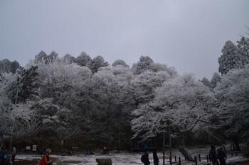 S20161230_019_konngousan