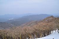 S20170129_031_miuneyama