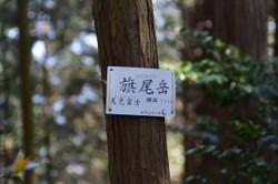 S20170430_014_torijigoku
